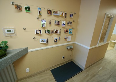 Pet Photo Wall