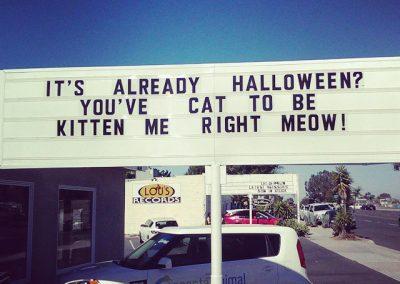 Halloween pun 10-29-2015