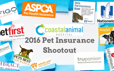 2016 Pet Insurance Shootout