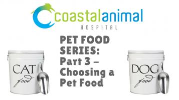 Pet Food Series, part 3: How to Choose a Pet Food