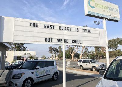 Were chill