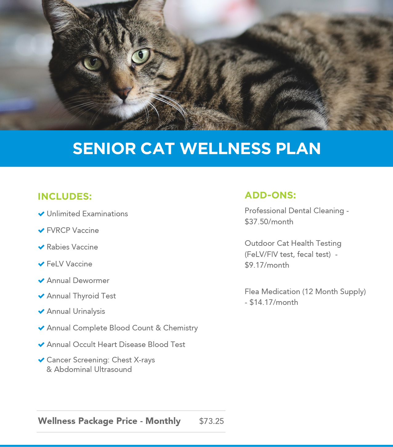 Indoor-Only Cat Wellness Plan