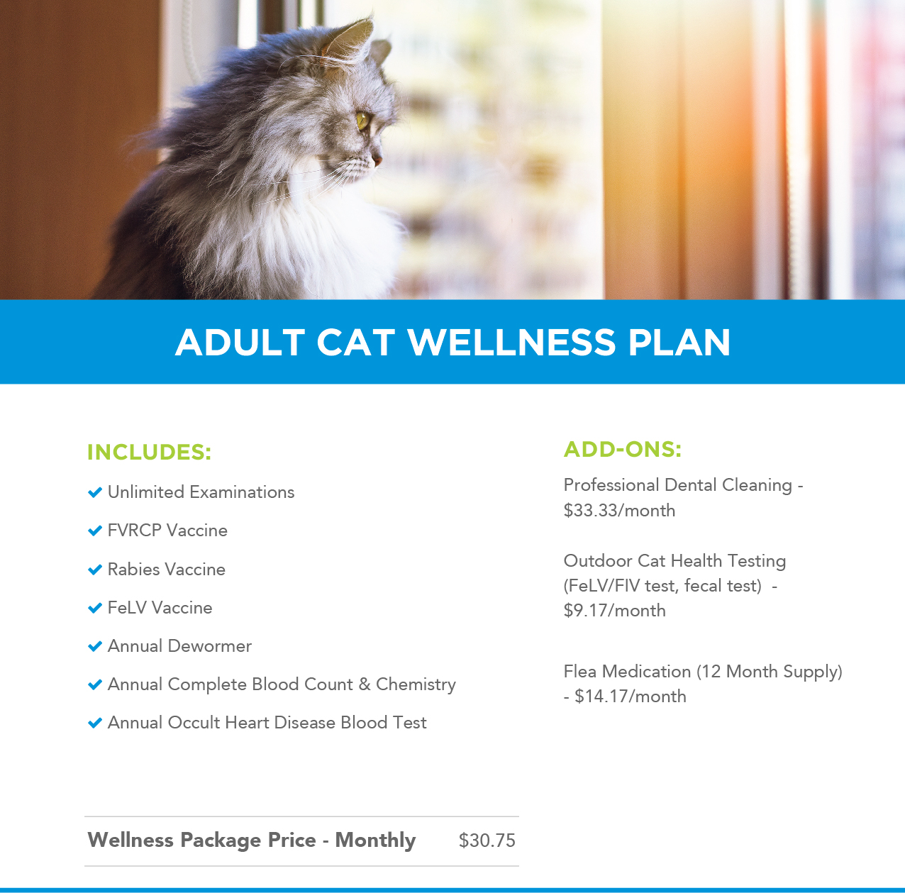 Adult Cat Wellness Plans Header